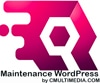 Maintenance Wordpress - Assistance